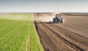 karantinadan sonra tarım sektörü değerlenecek